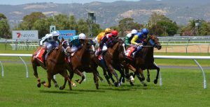Weekend Horse Racing Preview & Picks: Jockey Club Gold Cup & Flower Bowl