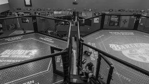 UFC Fight Night Robert Whittaker vs Kelvin Gastelum Preview, Odds, Pick